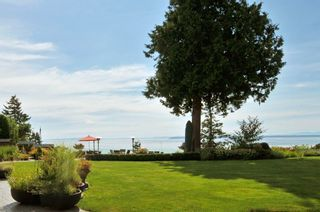 Photo 67: 2189 123RD Street in Surrey: Crescent Bch Ocean Pk. House for sale (South Surrey White Rock)  : MLS®# F1429622