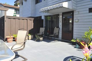 Photo 14: 9 3350 ROSEMONT DRIVE in Vancouver: Champlain Heights Townhouse for sale (Vancouver East)  : MLS®# R2268996