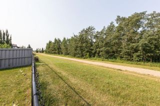 Photo 39: 2679 ANDERSON Crescent in Edmonton: Zone 56 House for sale : MLS®# E4256405