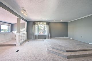 Photo 34: 305 EAST CHESTERMERE Drive: Chestermere Detached for sale : MLS®# A1120033