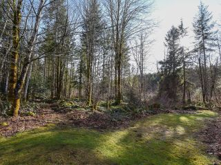 Photo 51: 3699 Burns Rd in COURTENAY: CV Courtenay West House for sale (Comox Valley)  : MLS®# 834832