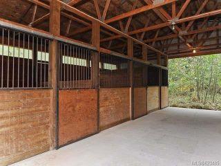 Photo 12: 6633 RENNIE ROAD in COURTENAY: Z2 Courtenay North House for sale (Zone 2 - Comox Valley)  : MLS®# 623485