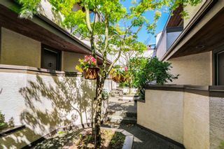 Photo 20:  in Vancouver: Home for sale : MLS®# V1069953