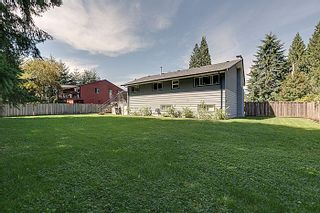 Photo 25: 5 BEDROOM UPDATED HOME ON 1/4 ACRE LOT IN PRIME PORT COQUITLAM LOCATION