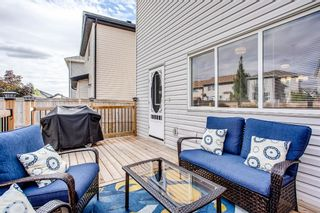 Photo 29: 216 Copperpond Road SE in Calgary: Copperfield Detached for sale : MLS®# A1034323