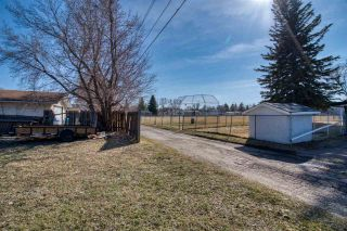 Photo 11: 12122 45 Street in Edmonton: Zone 23 Vacant Lot for sale : MLS®# E4239678