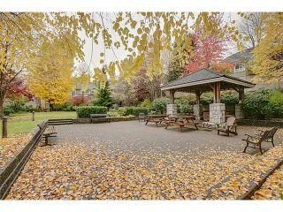 "Photo 14: 307 630 ROCHE POINT Drive in North Vancouver: Roche Point Condo for sale in ""THE LEGEND"" : MLS®# V978855"