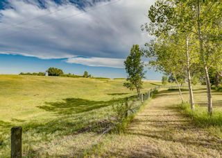 Photo 42: 284016 Range Road 275 in Rural Rocky View County: Rural Rocky View MD Detached for sale : MLS®# A1120975
