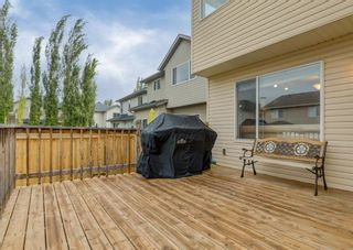 Photo 35: 368 Cranfield Gardens SW in Calgary: Cranston Detached for sale : MLS®# A1118684