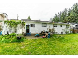 """Photo 17: 33329 RAINBOW Avenue in Abbotsford: Abbotsford West House for sale in """"Hoon Park"""" : MLS®# R2452789"""