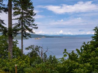 Photo 51: 4971 W Thompson Clarke Dr in DEEP BAY: PQ Bowser/Deep Bay House for sale (Parksville/Qualicum)  : MLS®# 831475
