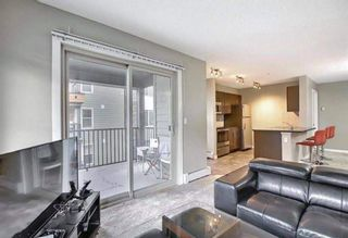 Photo 28: 1214 1317 27 Street SE in Calgary: Albert Park/Radisson Heights Apartment for sale : MLS®# A1142395