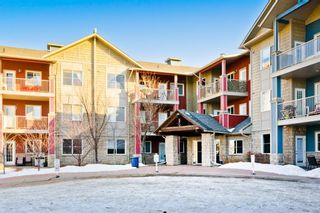Photo 27: 1316 2370 Bayside Road SW: Airdrie Apartment for sale : MLS®# A1060422