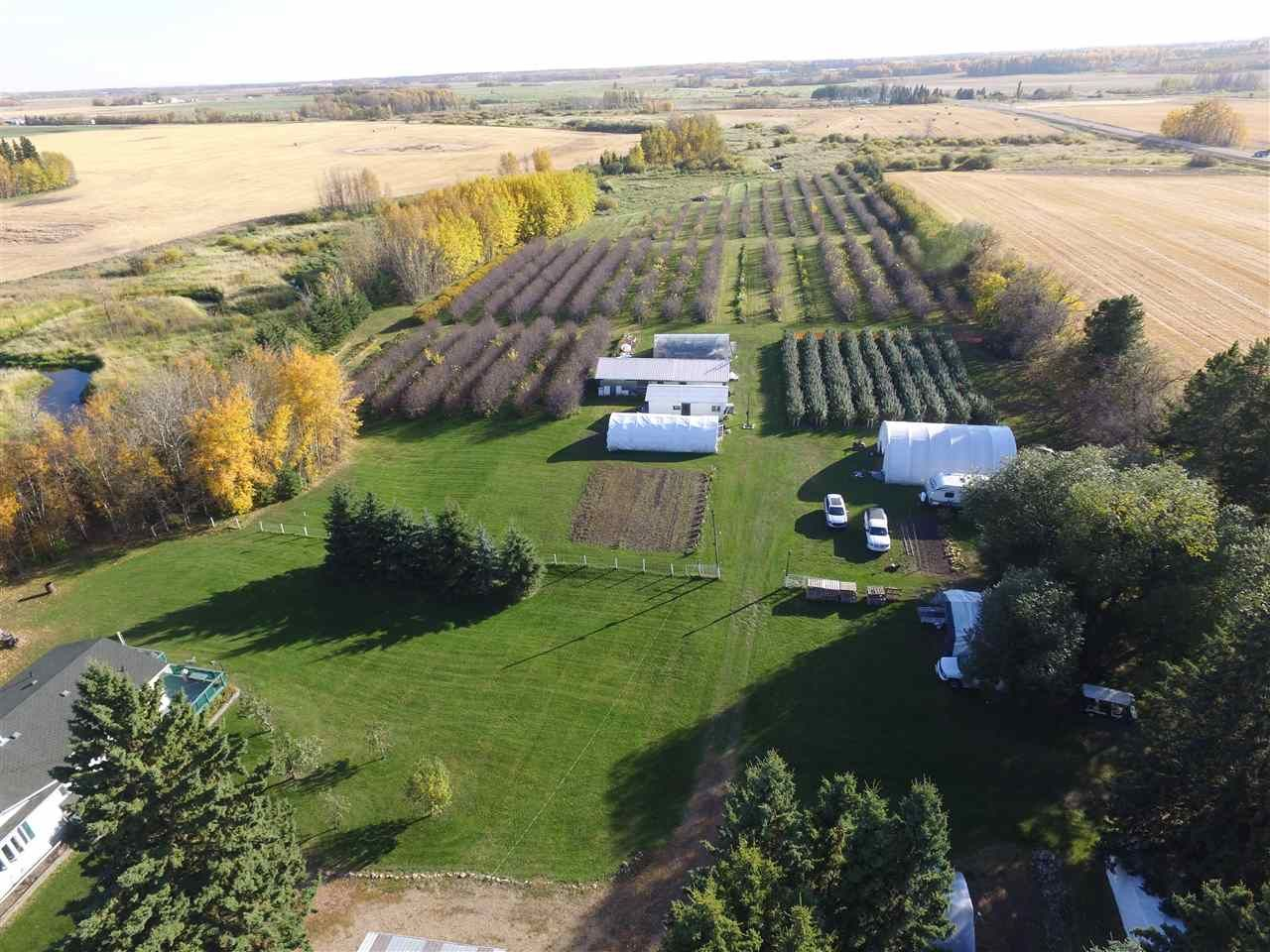 Photo 10: Photos: 265073 Twp Rd 472A: Rural Wetaskiwin County House for sale : MLS®# E4216435