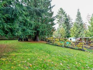 Photo 18: 4199 Enquist Rd in CAMPBELL RIVER: CR Campbell River South House for sale (Campbell River)  : MLS®# 827473