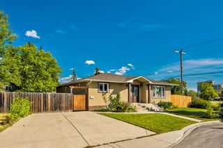 Photo 2: 8248 4A Street SW in Calgary: Kingsland Detached for sale : MLS®# A1142251