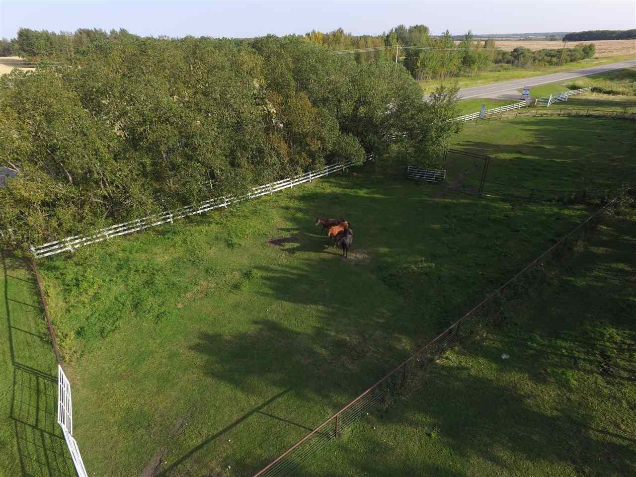 Photo 10: Photos: 472050A Hwy 814: Rural Wetaskiwin County House for sale : MLS®# E4213442