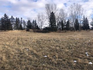 Photo 16: 16022 402 Avenue E: Rural Foothills County Land for sale : MLS®# A1051546