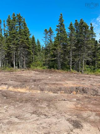 Photo 5: Lot 4 36056 Cabot Trail in Ingonish: 209-Victoria County / Baddeck Vacant Land for sale (Cape Breton)  : MLS®# 202119814