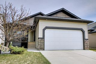 Photo 3: 213 westcreek Springs: Chestermere Detached for sale : MLS®# A1102308