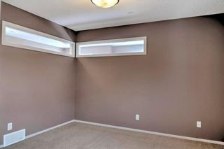 Photo 14: 123 COPPERSTONE Gardens SE in Calgary: Copperfield House for sale : MLS®# C4168083