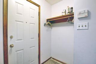Photo 4: 11936 37 Street in Edmonton: Zone 23 House for sale : MLS®# E4259871
