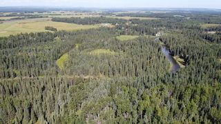 Photo 23: 5-31539 Rge Rd 53c: Rural Mountain View County Land for sale : MLS®# A1024431
