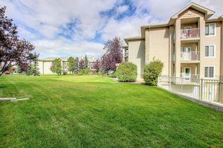 Photo 19: 2109 2600 66 Street NE in Calgary: Pineridge Apartment for sale : MLS®# A1142576