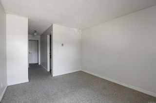 Photo 11: 201 585 Dogwood St in : CR Campbell River Central Condo for sale (Campbell River)  : MLS®# 879500