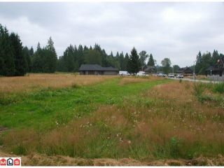 """Photo 2: 31517 KENNEY Avenue in Mission: Hatzic Land for sale in """"SPORTS PARK/GOLF COURSE"""" : MLS®# F1400489"""