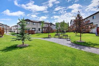 Photo 48: 14 445 Brintnell Boulevard in Edmonton: Zone 03 Townhouse for sale : MLS®# E4248531