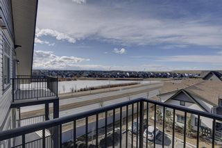 Photo 31: 419 117 Copperpond Common SE in Calgary: Copperfield Apartment for sale : MLS®# A1085904