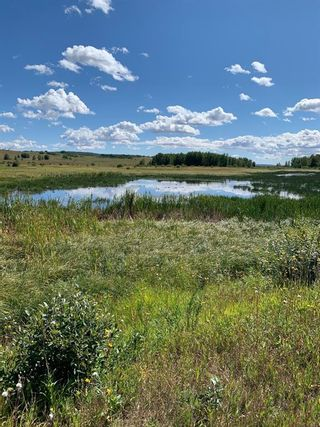 Photo 5: 10 176142 Hwy 549 W: Rural Foothills County Land for sale : MLS®# A1117268