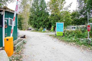 Photo 4: 12975 SQUAMISH VALLEY Road in Squamish: Upper Squamish Business with Property for sale : MLS®# C8037598