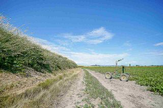 Photo 16: 16397 40 Avenue in Surrey: Serpentine Land for sale (Cloverdale)  : MLS®# R2586709