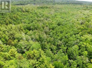 Photo 10: Lot Sunhaven Drive in Labelle: Vacant Land for sale : MLS®# 202108694