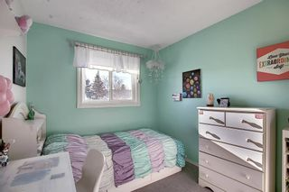 Photo 18: 211 Doverglen Crescent SE in Calgary: Dover Detached for sale : MLS®# A1060305