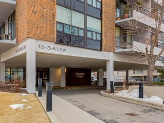Photo 35: 6F 133 25 Avenue SW in Calgary: Mission Apartment for sale : MLS®# A1061991