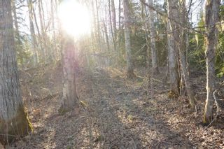 Photo 7: LOT A KLOECKNER Road in Smithers: Smithers - Rural Land for sale (Smithers And Area (Zone 54))  : MLS®# R2598861