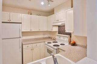 """Photo 10: 102 3628 RAE Avenue in Vancouver: Collingwood VE Condo for sale in """"RAINTREE GARDENS"""" (Vancouver East)  : MLS®# V1129612"""