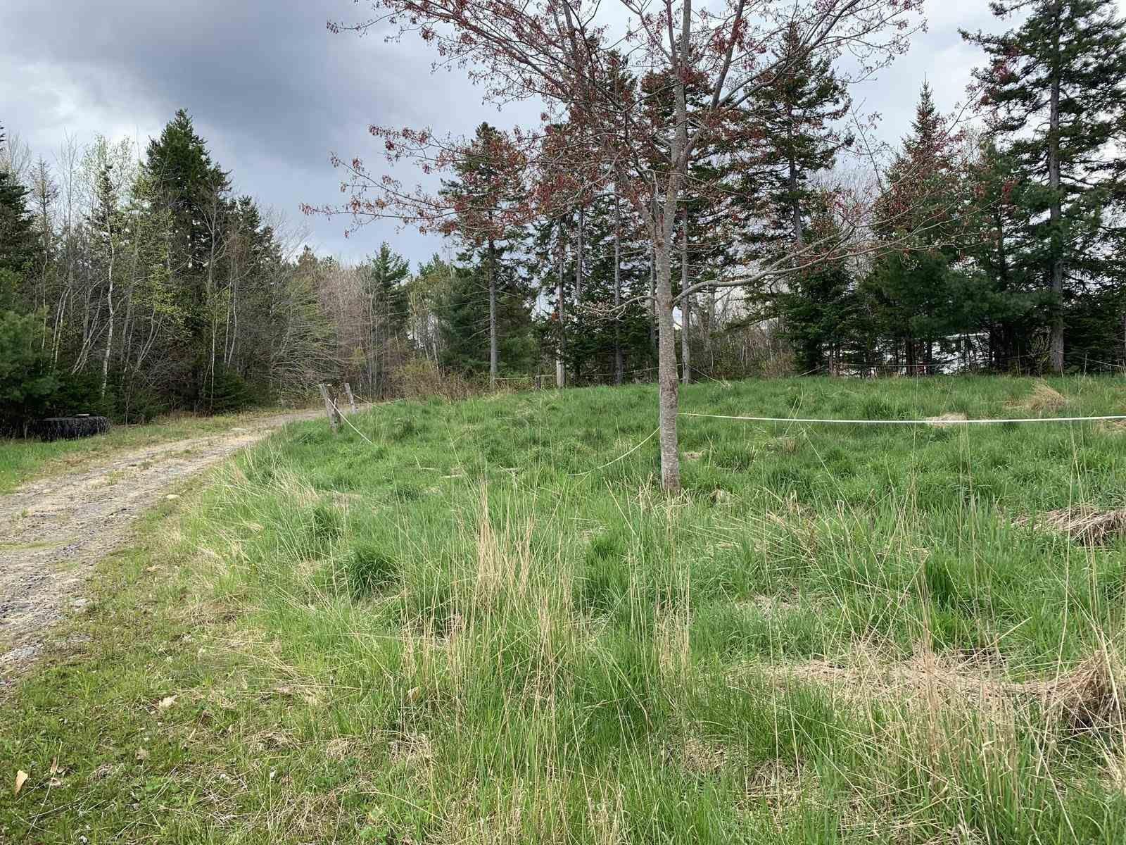 Main Photo: 92 Mines 2 Road in Hebbs Cross: 405-Lunenburg County Vacant Land for sale (South Shore)  : MLS®# 202111484