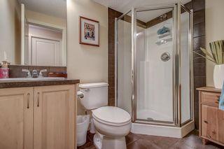 Photo 35: 230 Auburn Bay Boulevard SE in Calgary: Auburn Bay Detached for sale : MLS®# A1045900
