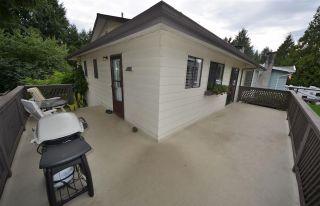 Photo 15: 20830 117 AVENUE in Maple Ridge: Southwest Maple Ridge House for sale : MLS®# R2001082