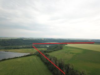 Photo 9: 27313 Twp Road 505: Rural Parkland County Rural Land/Vacant Lot for sale : MLS®# E4255712