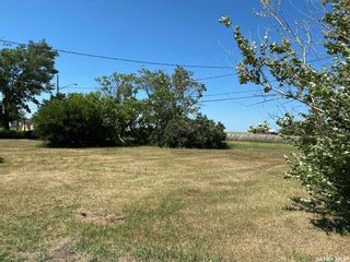Photo 11: Dafoe Acreage in Big Quill: Residential for sale (Big Quill Rm No. 308)  : MLS®# SK864565