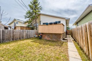 Photo 30: 114 Dovertree Place SE in Calgary: Dover Semi Detached for sale : MLS®# A1071722