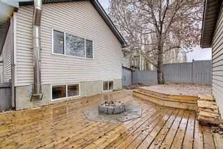 Photo 41: 312 Mt Aberdeen Close SE in Calgary: McKenzie Lake Detached for sale : MLS®# A1046407