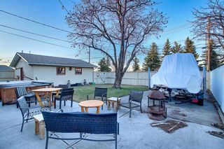 Photo 34: 52 Maple Court Crescent SE in Calgary: Maple Ridge Detached for sale : MLS®# A1092001
