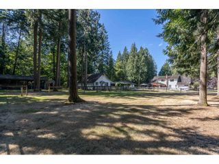 Photo 35: 2186 198 Street in Langley: Brookswood Langley House for sale : MLS®# R2489409