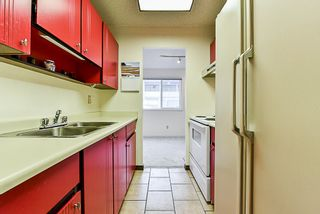 """Photo 4: 107 12096 222 Street in Maple Ridge: West Central Condo for sale in """"CANUCK PLAZA"""" : MLS®# R2386177"""